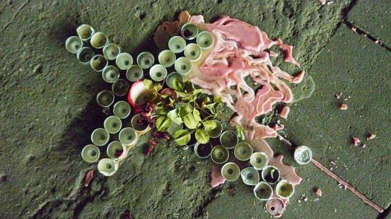 endoplast_loveparade2010_wasselowski1