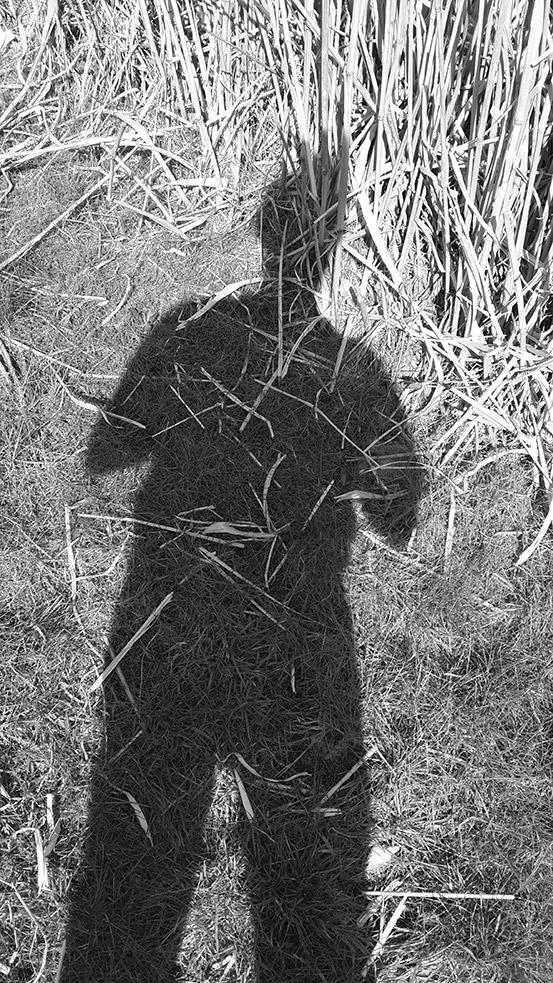 Der Schatten im Gras
