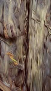 Auf dem Holzwehg