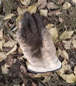 Als ich mir für mein Leben einmal etwas mehr Hand und Fuß gewünscht hatte…