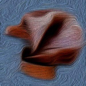 Gürteltiere: Als ich einmal alveolarklamm war