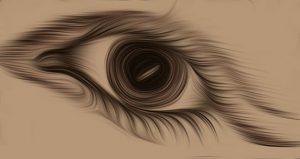 Blickkontrakt: Augenzwi(n)c/k(er)mühle