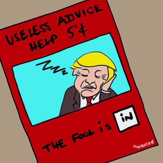 Donals Trump the advizer